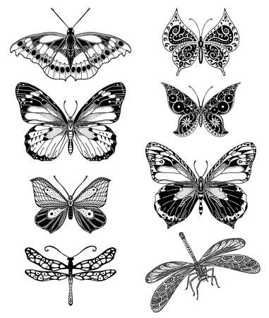 dragonfly wing: Illustrations of tatto style butterflies Illustration