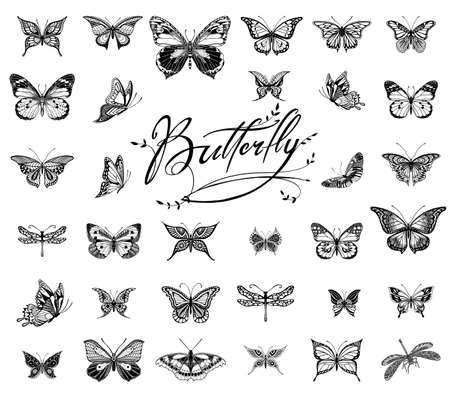 Illustrations of tatto style butterflies Çizim