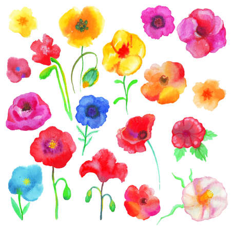 purple flower: Collection of multi-colored water color poppies with clipping paths. Stock Photo