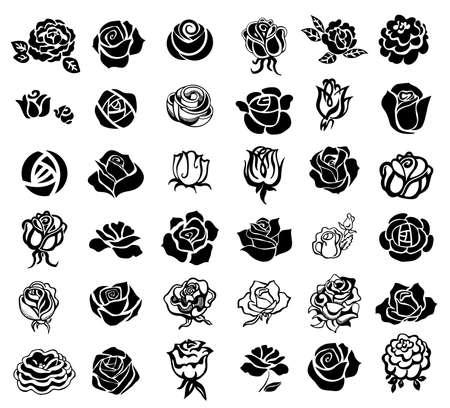 Rosen Design-Elemente Standard-Bild - 70082204