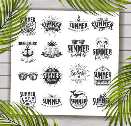 beach party: Summer Designs on Tropical Beach Background Illustration
