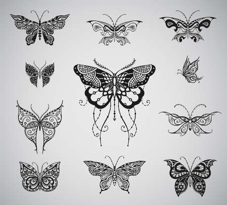 migrating: Butterflies graphic illustration