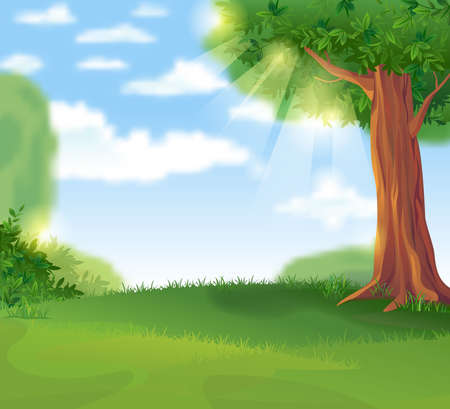 Cozy green lawn under a shady tree in the summer sunny day, vector illustration