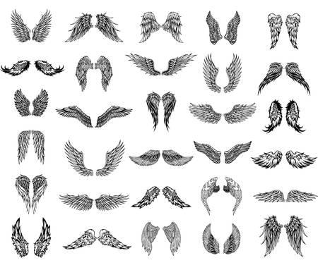 Dertig paar vleugels, grafische illustratie Stock Illustratie