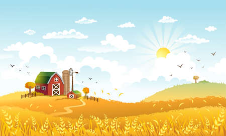 Rural scene with the farm and fields of the kept-up rye on a sunny day. The good choice for Thanksgiving background or greeting card.