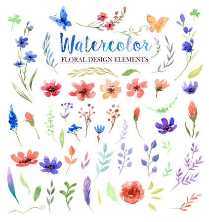 Watercolor vector hand drawn colorful flowers, leaves and birds. The art paint on white background Illustration