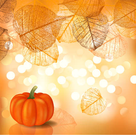 Festive background with pumpkin for Thanksgiving Day or Halloween, a vectorial format