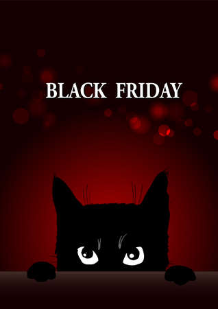 Black friday poster with angry black cat
