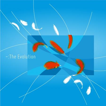 pool symbol: Feather Transforming