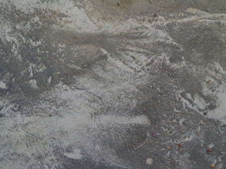 dusty: Animal paw print on the dusty earth of greyish color.