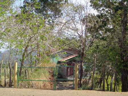 blanketed: hovel landscape with trees next to it with small metal gate leaf to the wooden shack seen is blanketed with Zinc green grass with poverty sadness solitude atmosphere pain and sorrow With clear atmosphere.