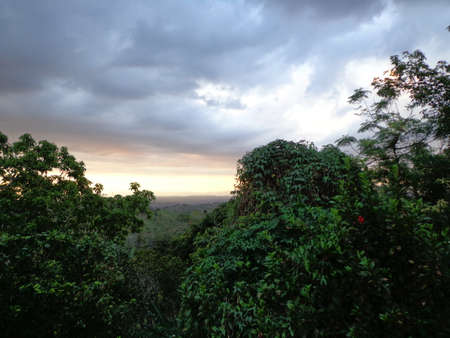 sunset with the sun hidden under the clouds of grayish color, with green trees With many leaves at the bottom of a mountain.