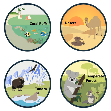 temperate: Habitats of the World vector set Illustration