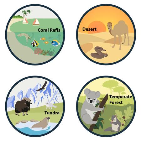 Habitats of the World vector set Illustration