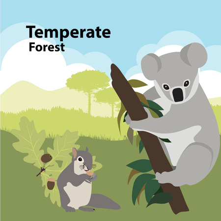 Vector illustrations  Eco style life forest Wildlife. Forest
