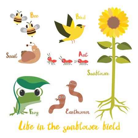 part frog: Animal in the sunflower field cartoon illustration design