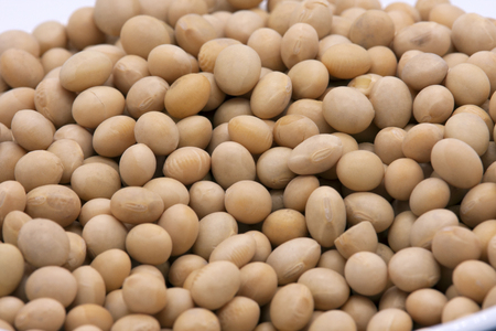 Soy beans on white background high protein Close-up Selective focus seeds Soya bean pulses in a wooden spoon (Glycine max (L.) Merr.)