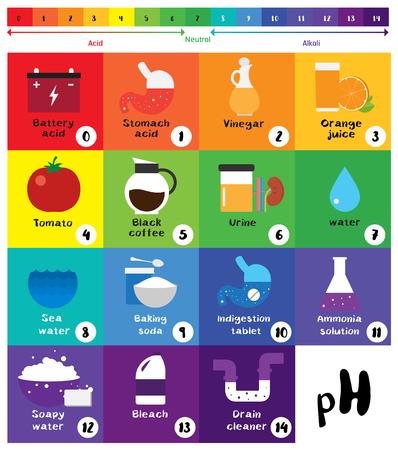 La escala del pH Indicador universal pH Color Diagrama diagrama ácidos alcalinos valores comunes sustancias vectoriales ilustración plana icono de diseño Colorido Ilustración de vector