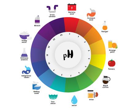 L'échelle de pH Indicateur universel pH Diagramme de couleur diagramme des valeurs alcalines acides substances communes illustration vectorielle conception d'icône plate colorée