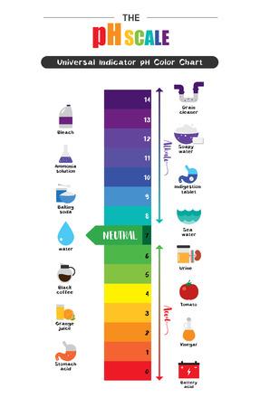 L'échelle de pH Indicateur universel pH Diagramme de couleur diagramme des valeurs alcalines acides substances communes illustration vectorielle conception d'icône plate colorée Vecteurs