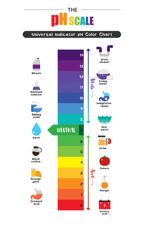 Skala pH Uniwersalny wskaźnik pH Kolor Wykres diagramu kwaśne wartości alkaliczne wspólne rysunki substancji ilustracja płaska ikona Kolorowe Ilustracje wektorowe