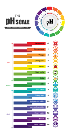 pH 규모 범용 지표 pH 색상 차트 다이어그램 산성 알칼리 값 일반적인 물질 벡터 일러스트 레이 션 플랫 아이콘 디자인 다채로운