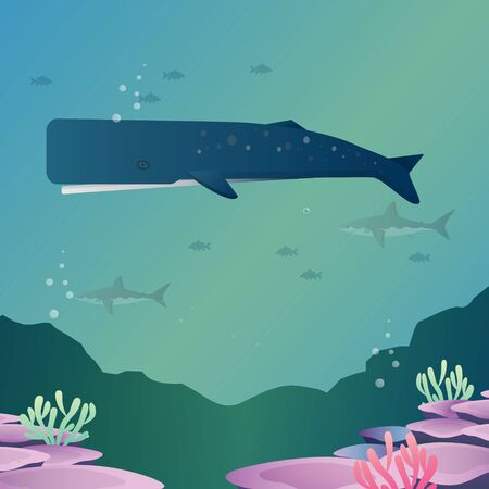 Sperm whale marine mammal in ocean vector style. Illustration