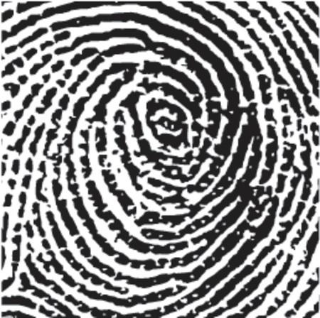 Square Fingerprint Crop Vector