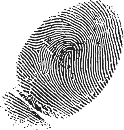 vectorized: vectorizado de huella dactilar