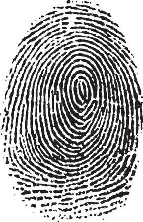 personal identity: Fingerprint vectorizado