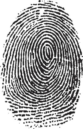vectorized Fingerprint Stock Vector - 685944