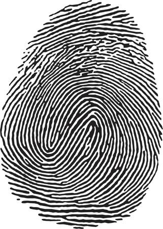 vectorized Fingerprint Stock Vector - 685942