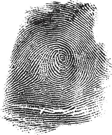 csi: ilustraci�n de huellas digitales  Vectores