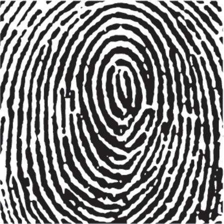 Fingerprint Crop Vector