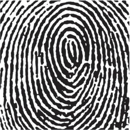 Fingerprint Crop Stock Vector - 727720