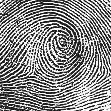 Fingerprint Crop Vector