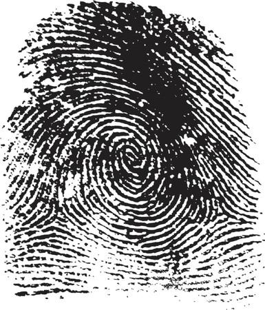 fingerprint illustration Vector