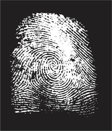 csi: huella digital en negativo (por el vector, la parte blanca es transparente, puede cambiar el color negro de la parte, y ver a trav�s de huella dactilar)