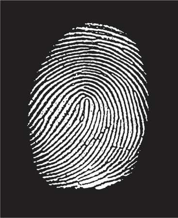 finger print: fingerprint in negative. (in the vector the white part is transparent) Illustration