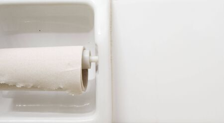 bad hygiene: almost empty roll of toilet paper Stock Photo