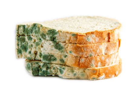 moldy bread in isolated white background Stock Photo