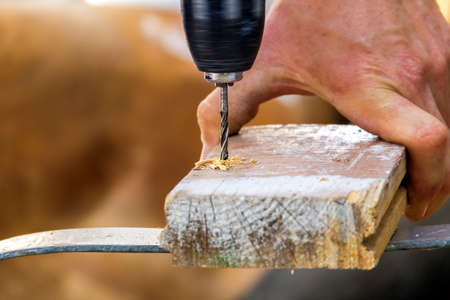swarf: Drill with sawdust in beautiful day in summer