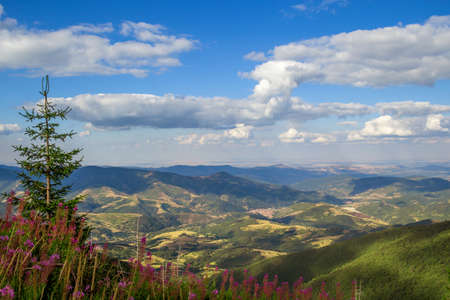 Scenic mountain landscape shot in summer