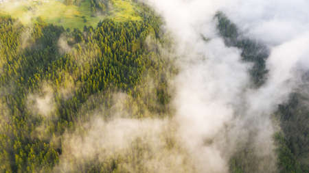 Overhead view of clouds over forest in mountains.