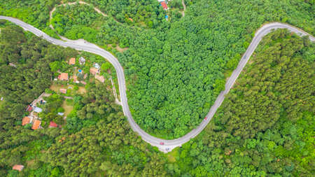 Aerial view of winding road trough the dense woods on the high mountain in Bulgaria.