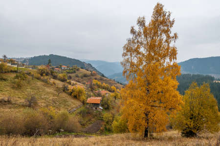 Autumn in the Rhodope Mountains, Bulgaria. Early morning.