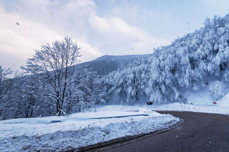 Mountain winter road through the forest. 写真素材