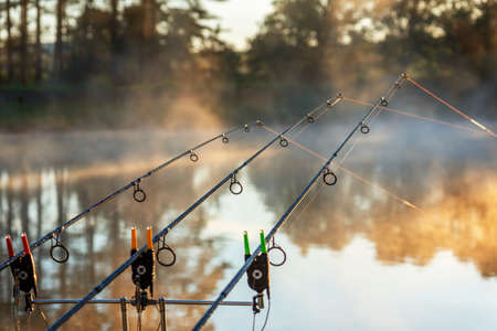 Carp fishing rods misty lake in bulgaria.