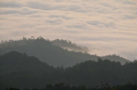 farther: fog mountain in thailand Stock Photo