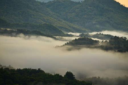 fog mountain photo